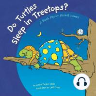 Do Turtles Sleep in Treetops?