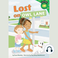 Lost on Owl Lane