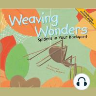 Weaving Wonders