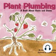 Plant Plumbing