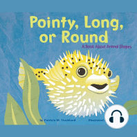 Pointy, Long, or Round