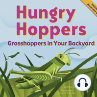 Hungry Hoppers