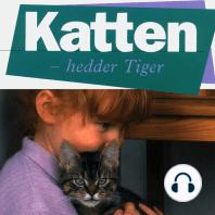 Katten - hedder Tiger (uforkortet)