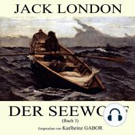 Der Seewolf (Buch 3)