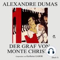 Der Graf von Monte Christo (Buch 3)