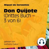 Don Quijote (Drittes Buch) [3 von 6]