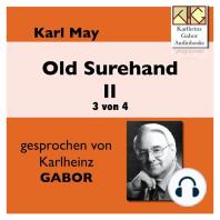 Old Surehand II (3 von 4)