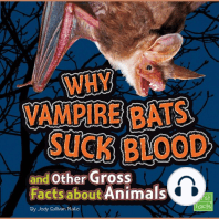 Why Vampire Bats Suck Blood and Other Gross Facts about Animals
