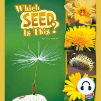 Which Seed Is This?