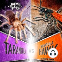 Tarantula vs. Tarantula Hawk: Clash of the Giants
