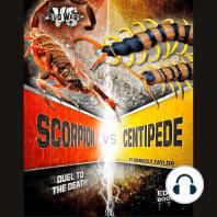 Scorpion vs. Centipede