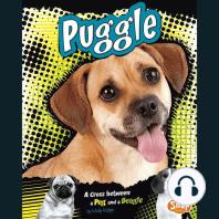 Puggle