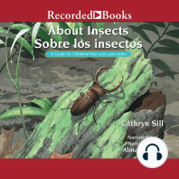 About Insects | Sobre los insectos
