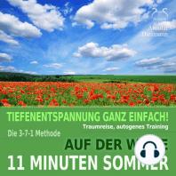 11 Minuten Sommer