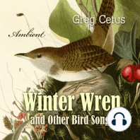 Winter Wren and Other Bird Songs: Nature Sounds for Mindfullness
