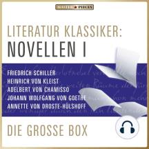 Literatur Klassiker: Novellen I: Die große Box