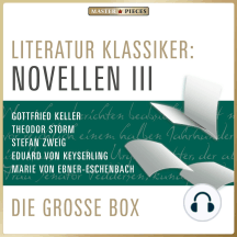 Literatur Klassiker: Novellen III: Die große Box