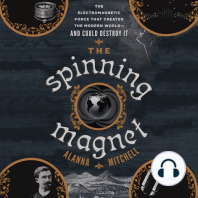 The Spinning Magnet