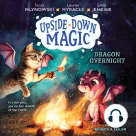 Dragon Overnight