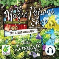 Magic Potions Shop, The