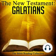 New Testament, The
