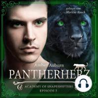 Pantherherz, Episode 3 - Fantasy-Serie: Academy of Shapeshifters