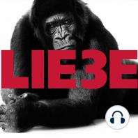 Hagen Rether, Liebe 3