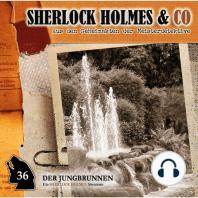 Sherlock Holmes & Co, Folge 36