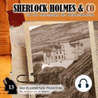 Sherlock Holmes & Co, Folge 13