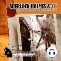 Sherlock Holmes & Co, Folge 5
