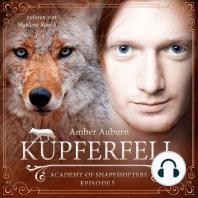 Kupferfell, Episode 5 - Fantasy-Serie
