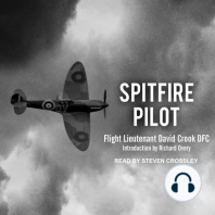 Spitfire Pilot