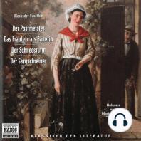 Erzählungen - Der Postmeister / Das Fraulein als Bauerin / Der Schneesturm / Der Sargschreiner