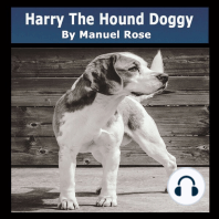 Harry The Hound Doggy