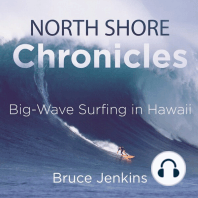 North Shore Chronicles
