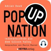Pop Up Nation: Innenansichten aus dem Silicon Valley