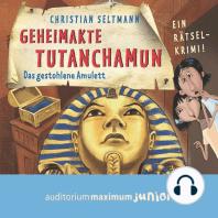 Geheimakte Tutanchamun - Das gestohlene Amulett - Ein Rätselkrimi (Ungekürzt)