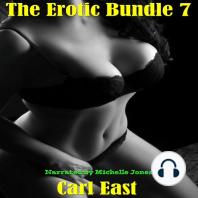 The Erotic Bundle 7