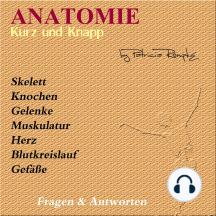 Anatomie kurz und knapp: Fragen & Antworten