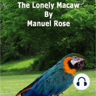The Lonely Macaw