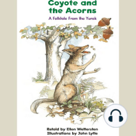 Coyote and the Acorns