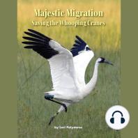 Majestic Migration