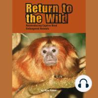 Return to the Wild