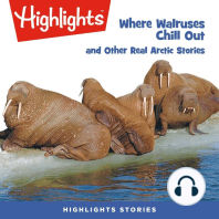 Where Walruses Chill Out