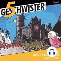 Im unheimlichen Schloss (5 Geschwister 3)