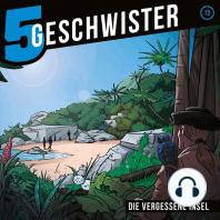 Die vergessene Insel (5 Geschwister 13)
