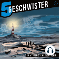 Im mysteriösen Leuchtturm (5 Geschwister 11)