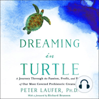 Dreaming in Turtle
