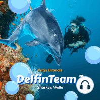 Sharkys Welle - DelfinTeam 3