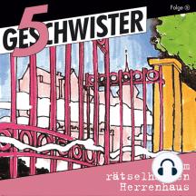 Im rätselhaften Herrenhaus (5 Geschwister 5): Kinder-Hörspiel